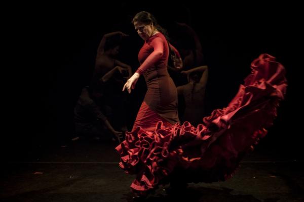 / actu / Un été flamenco !