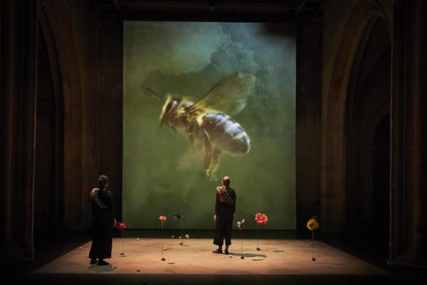 / critique / Céline Schaeffer pose sa ruche à Avignon