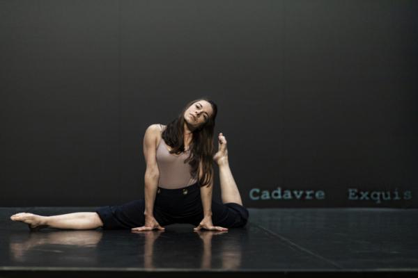 / critique / Elodie Guezou est 12 femmes en cirque
